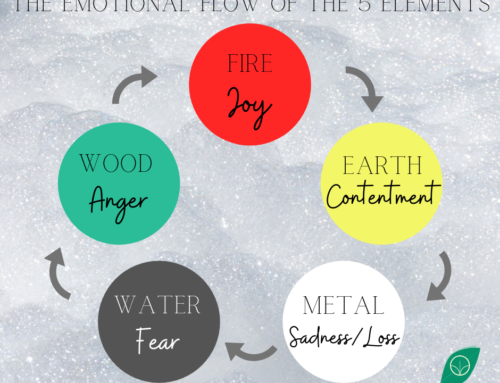 Chinese Medicine + The Emotional Flow Of The 5 Elements By Pip Atherstone-Reid