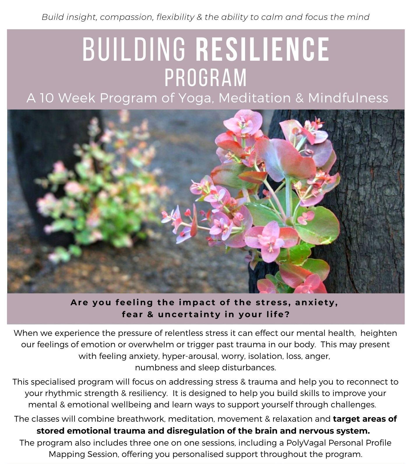 Building resilience program