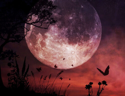Astrology Blog With Gil Dwyer – Surrendering to Illumination from above at the Scorpio Full Super Moon