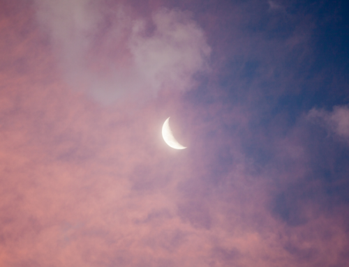 Astrology Blog with Gil Dwyer – We are Family : New Moon in Cancer