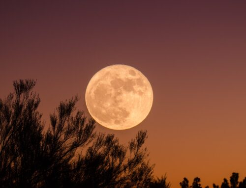 Astrology Blog with Gil Dwyer: Embracing Your Individuality and Sharing Your Gifts at the Aquarius Full Moon