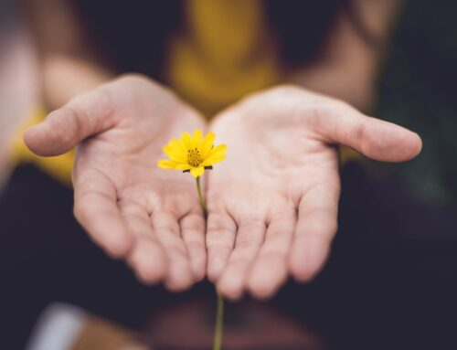 An offering of Reiki to our community