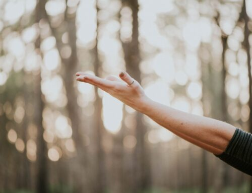 Supporting your physical and energetic body by Vanessa Foley